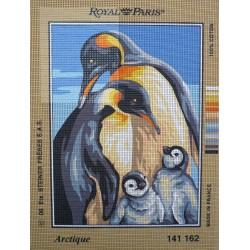 canevas 30x40 marque ROYAL PARIS  thème arctique dimension 30 centimètres par 40 centimètres 100 % coton