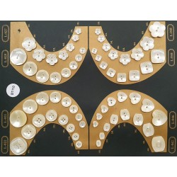 Plaque de 64 boutons pour création unique le plus gros diamètre 30 mm et le plus petit diamètre 12 mm
