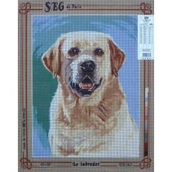 canevas 40x50 marque SEG DE PARIS chien le labrador dimension 40 centimètres par 50 centimètres 100 % coton