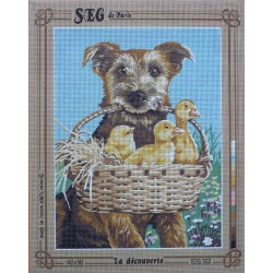 canevas 40x50 marque SEG DE PARIS chien la découverte dimension 40 centimètres par 50 centimètres 100 % coton