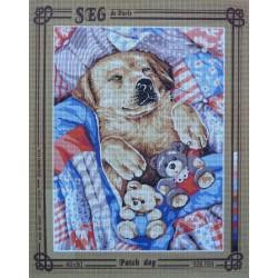 canevas 40x50 marque SEG DE PARIS chien  patch dog dimension 40 centimètres par 50 centimètres 100 % coton