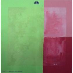 toile aida DMC 5.5 pts au cm coupon de 50 cm x 50 cm neuf couleur vert rose bordeau