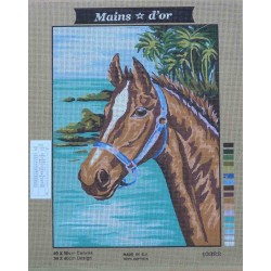 canevas 40x50 marque MAINS D'OR cheval dimension 40 centimètres par 50 centimètres 100 % coton