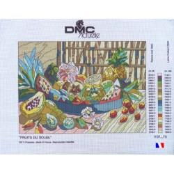"""Canevas à broder 50 x 65 cm marque DMC ACTUELLE thème """"fruits du soleil"""" fabrication française"""