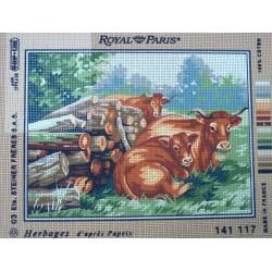 canevas 30X40 marque ROYAL PARIS thème les herbages dimennsion 30 centimètres par 40 centimètres 100 % coton